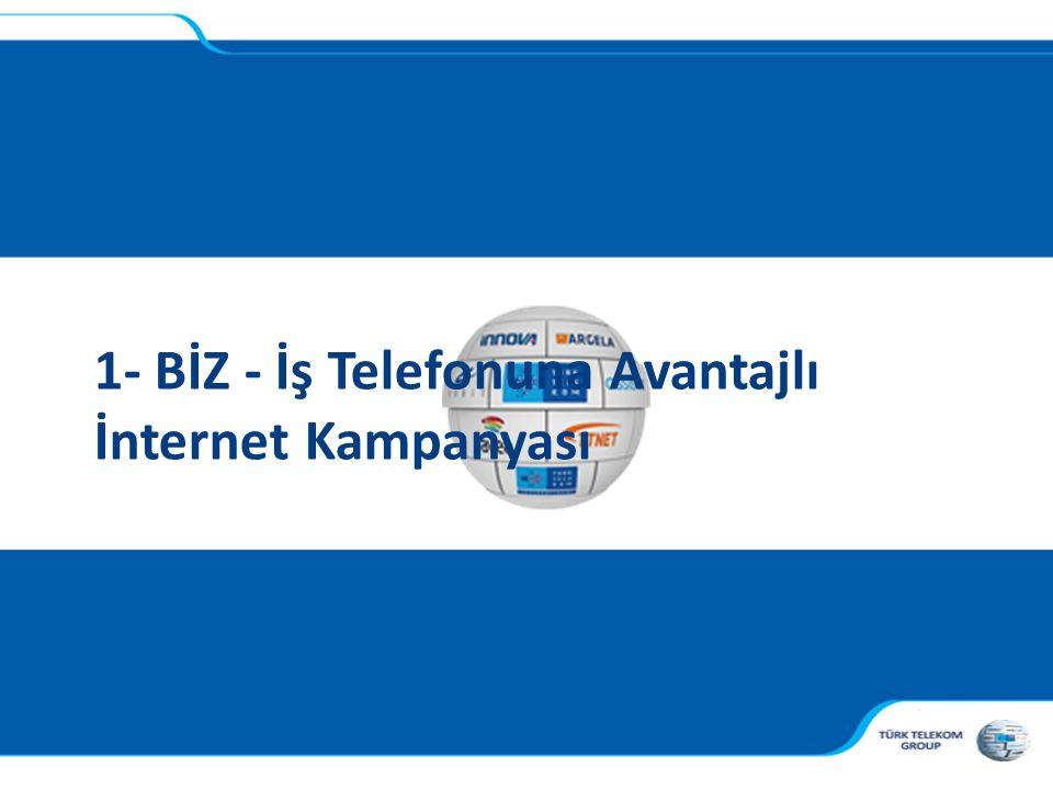 , 1- BİZ - İş Telefonuna Avantajlı İnternet Kampanyası