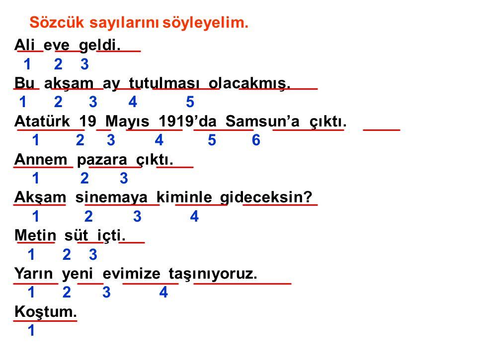Örnek  Ali eve geldi.  Bu akşam ay tutulması olacakmış.  Atatürk 19 Mayıs 1919'da Samsun'a çıktı.  Annem pazara çıktı.  Akşam sinemaya kiminle gi