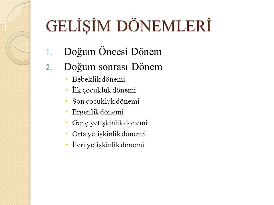 GELİŞİM DÖNEMLERİ 1.Doğum Öncesi Dönem 2.
