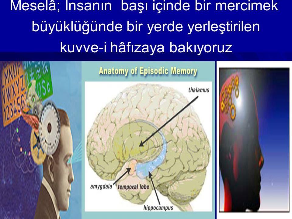 Meselâ; İnsanın başı içinde bir mercimek büyüklüğünde bir yerde yerleştirilen kuvve-i hâfızaya bakıyoruz