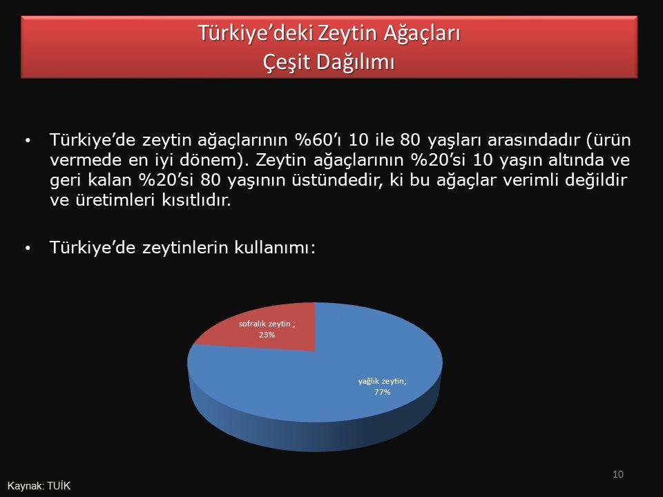 Türkiye'de zeytin ağaçlarının %60'ı 10 ile 80 yaşları arasındadır (ürün vermede en iyi dönem). Zeytin ağaçlarının %20'si 10 yaşın altında ve geri kala