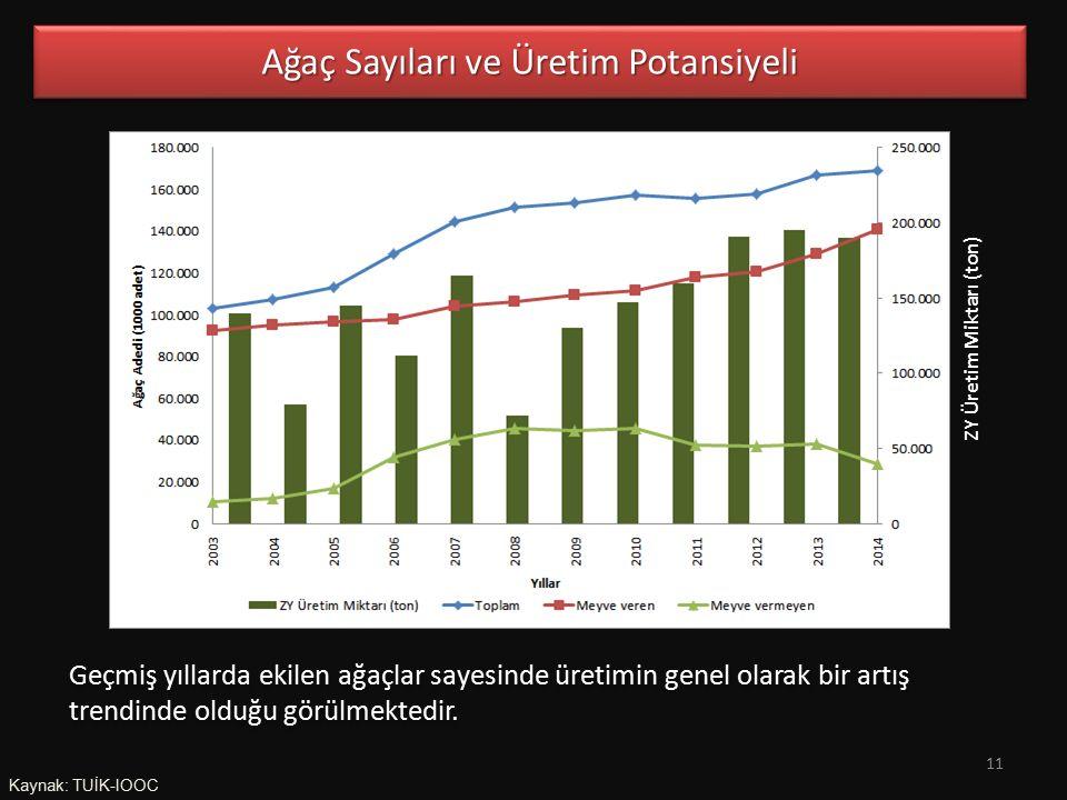 Kaynak: TUİK-IOOC Ağaç Sayıları ve Üretim Potansiyeli Geçmiş yıllarda ekilen ağaçlar sayesinde üretimin genel olarak bir artış trendinde olduğu görülmektedir.