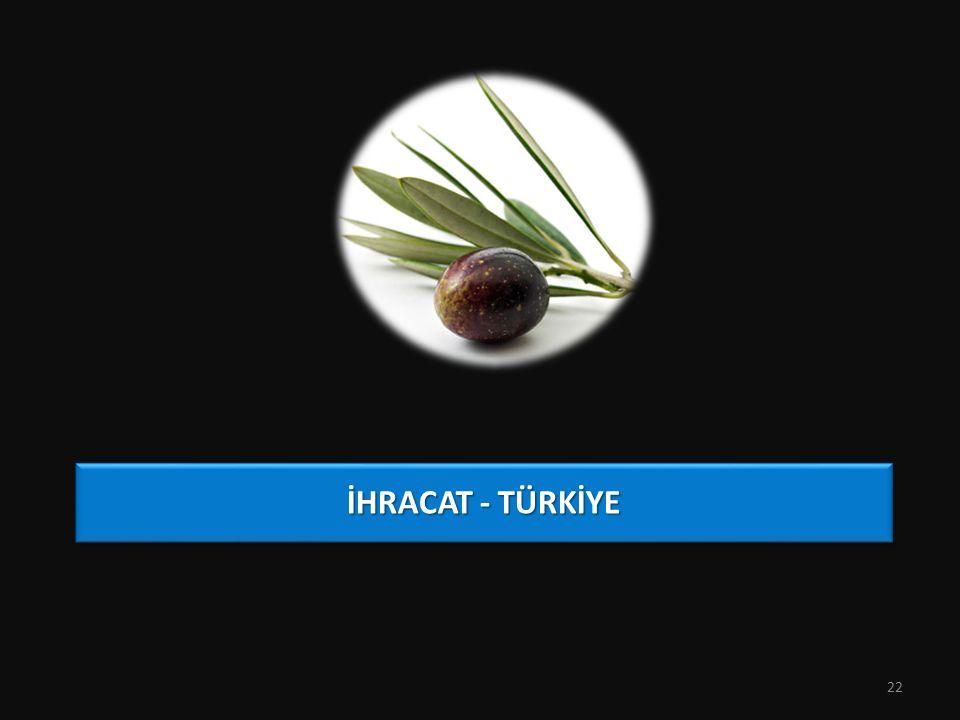 İHRACAT - TÜRKİYE 22