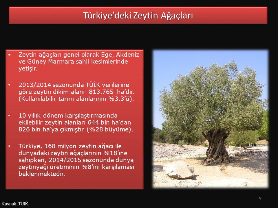  Zeytin ağaçları genel olarak Ege, Akdeniz ve Güney Marmara sahil kesimlerinde yetişir. 2013/2014 sezonunda TÜİK verilerine göre zeytin dikim alanı 8