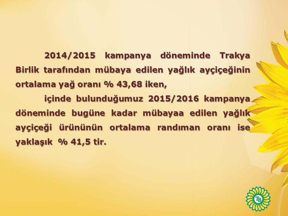 2014/2015 kampanya döneminde Trakya Birlik tarafından mübaya edilen yağlık ayçiçeğinin ortalama yağ oranı % 43,68 iken, içinde bulunduğumuz 2015/2016 kampanya döneminde bugüne kadar mübayaa edilen yağlık ayçiçeği ürününün ortalama randıman oranı ise yaklaşık % 41,5 tir.