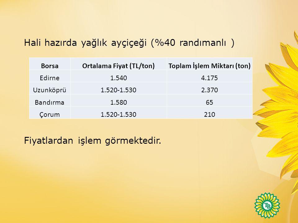 Hali hazırda yağlık ayçiçeği (%40 randımanlı ) Fiyatlardan işlem görmektedir.