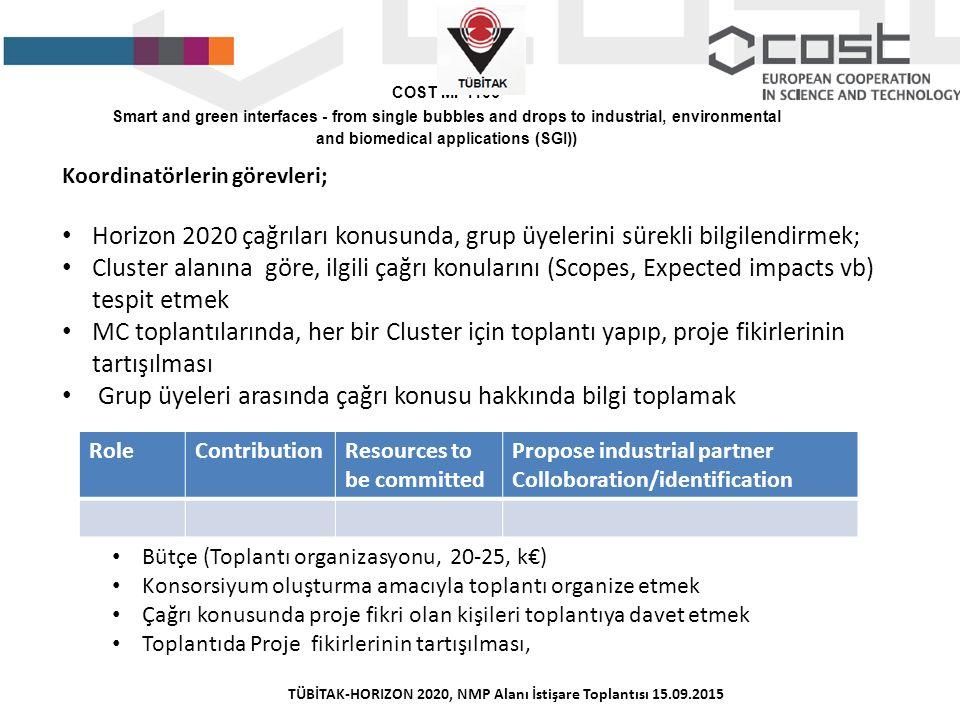 Koordinatörlerin görevleri; Horizon 2020 çağrıları konusunda, grup üyelerini sürekli bilgilendirmek; Cluster alanına göre, ilgili çağrı konularını (Sc