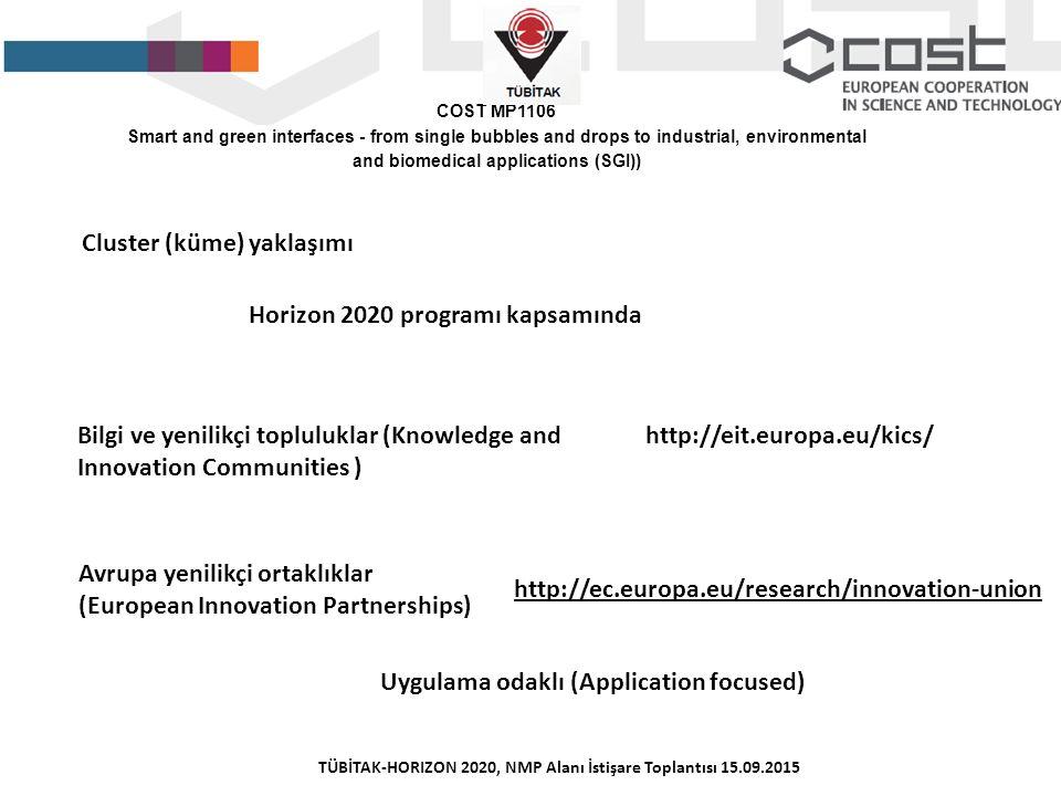 Cluster (küme) yaklaşımı Horizon 2020 programı kapsamında Bilgi ve yenilikçi topluluklar (Knowledge and Innovation Communities ) http://eit.europa.eu/