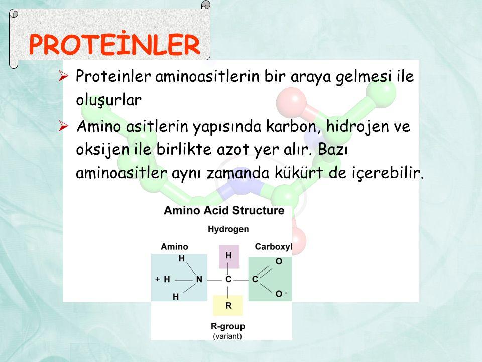 PROTEİNLER  Proteinler aminoasitlerin bir araya gelmesi ile oluşurlar  Amino asitlerin yapısında karbon, hidrojen ve oksijen ile birlikte azot yer alır.