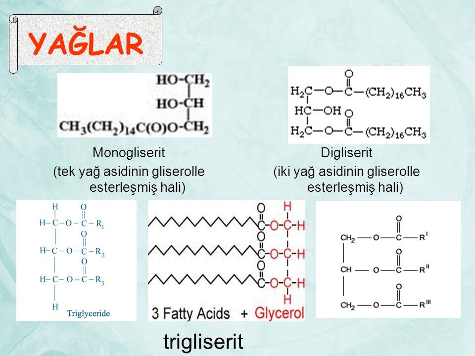YAĞLAR Monogliserit (tek yağ asidinin gliserolle esterleşmiş hali) Digliserit (iki yağ asidinin gliserolle esterleşmiş hali) trigliserit