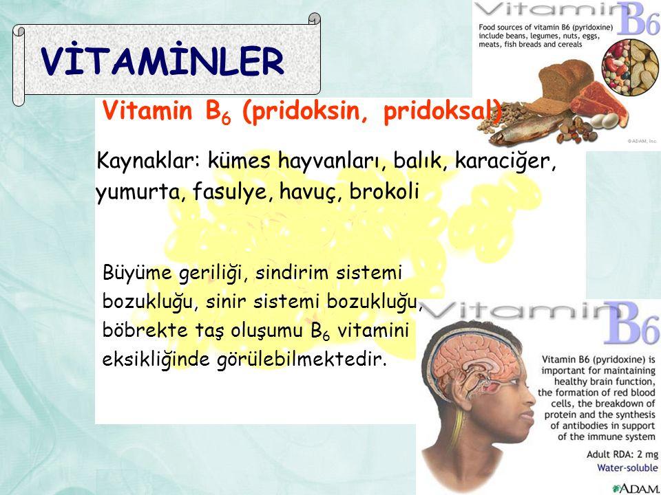 VİTAMİNLER Vitamin B 6 (pridoksin, pridoksal) Kaynaklar: kümes hayvanları, balık, karaciğer, yumurta, fasulye, havuç, brokoli Büyüme geriliği, sindirim sistemi bozukluğu, sinir sistemi bozukluğu, böbrekte taş oluşumu B 6 vitamini eksikliğinde görülebilmektedir.