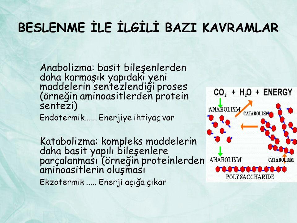 BESLENME İLE İLGİLİ BAZI KAVRAMLAR Anabolizma: basit bileşenlerden daha karmaşık yapıdaki yeni maddelerin sentezlendiği proses (örneğin aminoasitlerden protein sentezi) Endotermik......