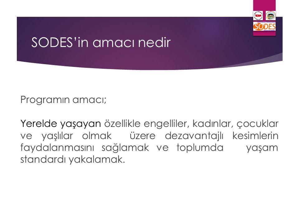 Proje Kapsamında Yapılan Harcamalar  Bütçe harcama yetkilisi kurumun en yetkili amiridir.