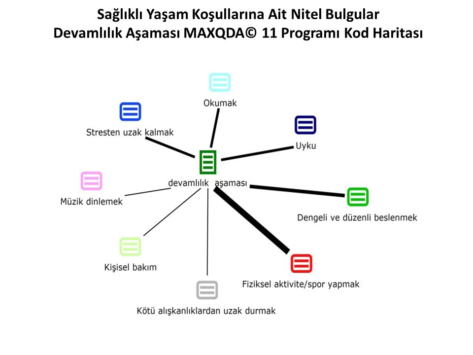 Sağlıklı Yaşam Koşullarına Ait Nitel Bulgular Devamlılık Aşaması MAXQDA© 11 Programı Kod Haritası