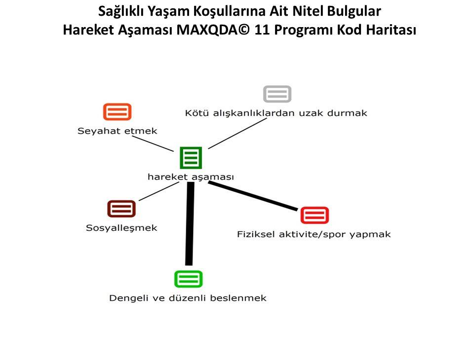 Sağlıklı Yaşam Koşullarına Ait Nitel Bulgular Hareket Aşaması MAXQDA© 11 Programı Kod Haritası