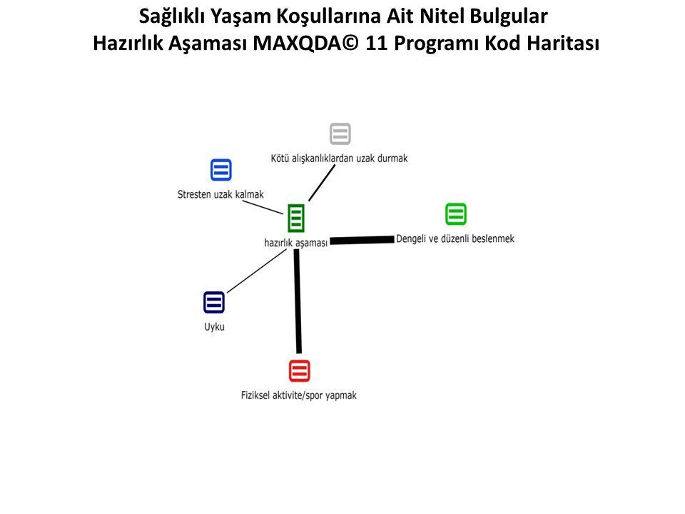 Sağlıklı Yaşam Koşullarına Ait Nitel Bulgular Hazırlık Aşaması MAXQDA© 11 Programı Kod Haritası
