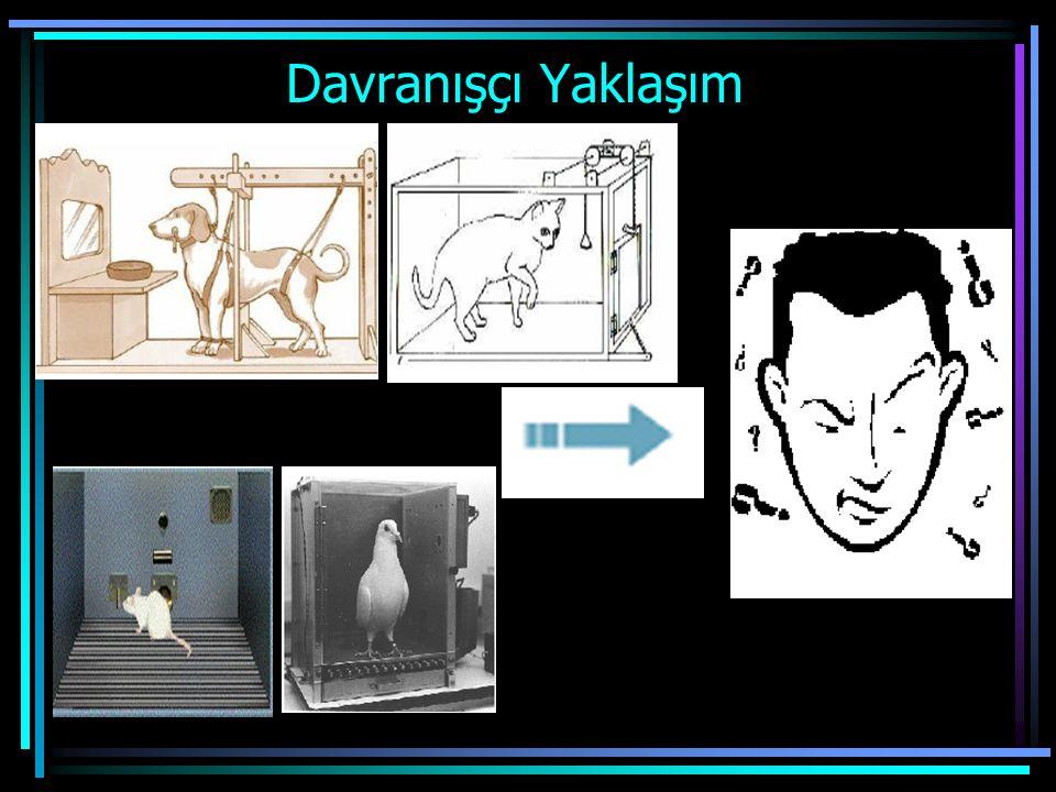 Davranışçı Yaklaşım Farklı tür hayvanlardan elde edilen bilgiler insanlara aktarılmıştır. Temsilcileri Pavlov,Skinner ve Thorndike'dır. Pavlov köpekle
