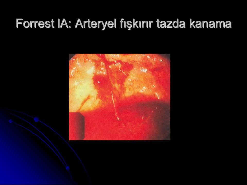Forrest IA: Arteryel fışkırır tazda kanama