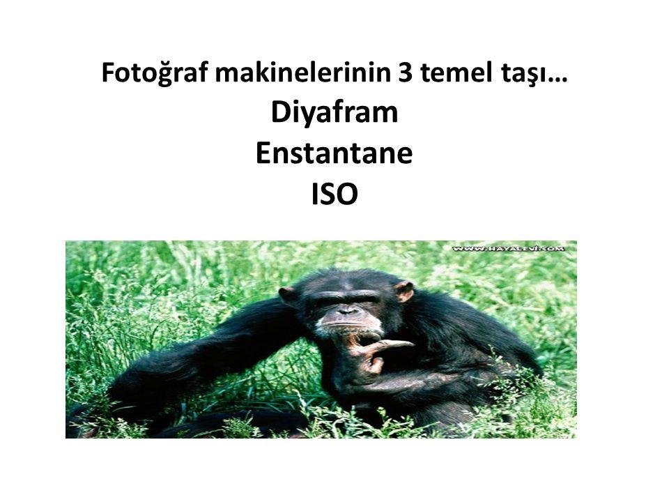Fotoğraf makinelerinin 3 temel taşı… Diyafram Enstantane ISO