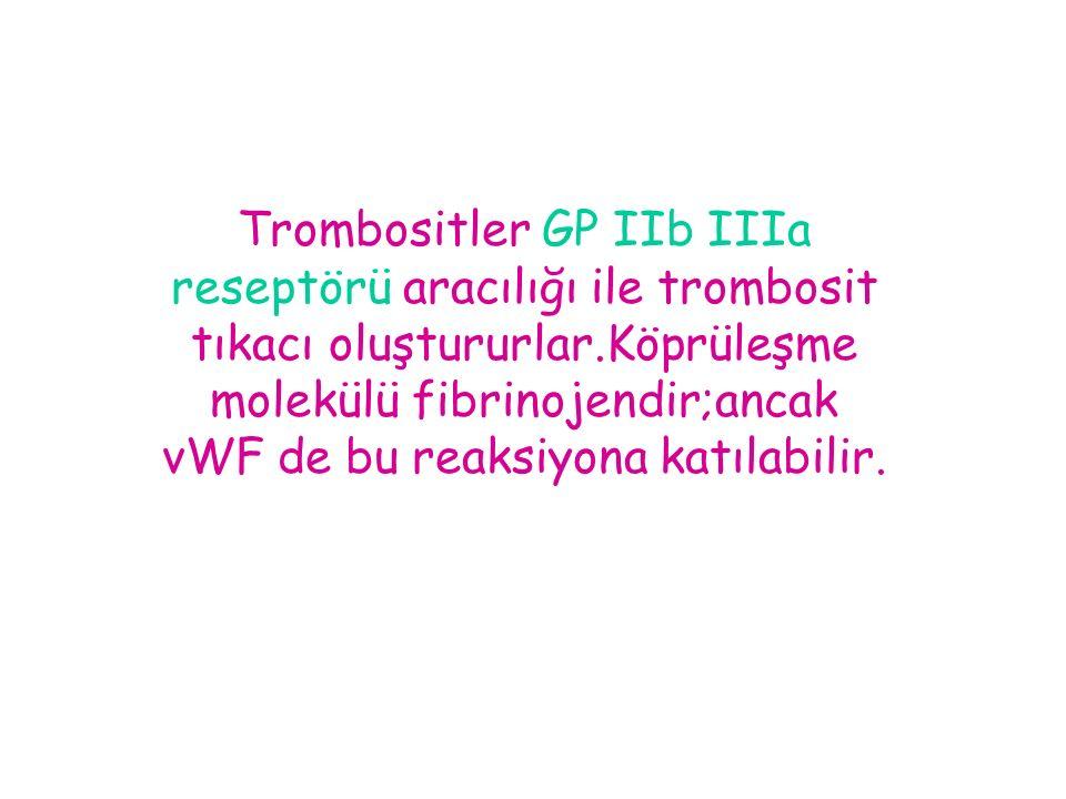 Trombositler GP IIb IIIa reseptörü aracılığı ile trombosit tıkacı oluştururlar.Köprüleşme molekülü fibrinojendir;ancak vWF de bu reaksiyona katılabili