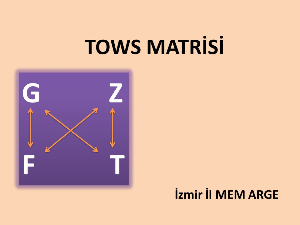 TOWS MATRİSİ İzmir İl MEM ARGE G Z F T G Z F T