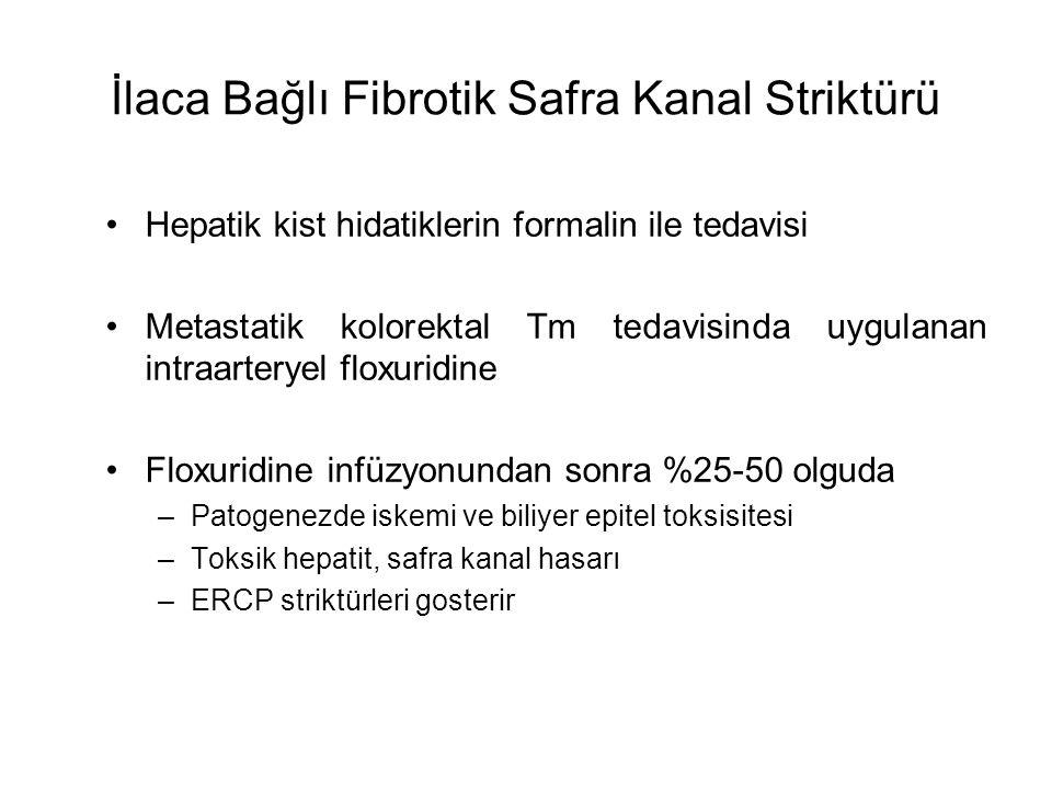 İlaca Bağlı Fibrotik Safra Kanal Striktürü Hepatik kist hidatiklerin formalin ile tedavisi Metastatik kolorektal Tm tedavisinda uygulanan intraarterye