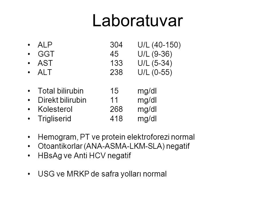 Laboratuvar ALP304 U/L (40-150) GGT45U/L (9-36) AST133U/L (5-34) ALT238U/L (0-55) Total bilirubin15mg/dl Direkt bilirubin11mg/dl Kolesterol268 mg/dl T