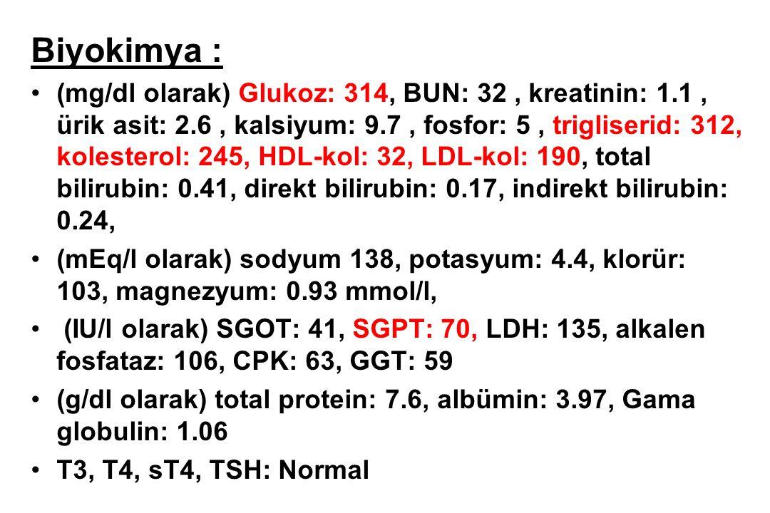 Biyokimya : (mg/dl olarak) Glukoz: 314, BUN: 32, kreatinin: 1.1, ürik asit: 2.6, kalsiyum: 9.7, fosfor: 5, trigliserid: 312, kolesterol: 245, HDL-kol: