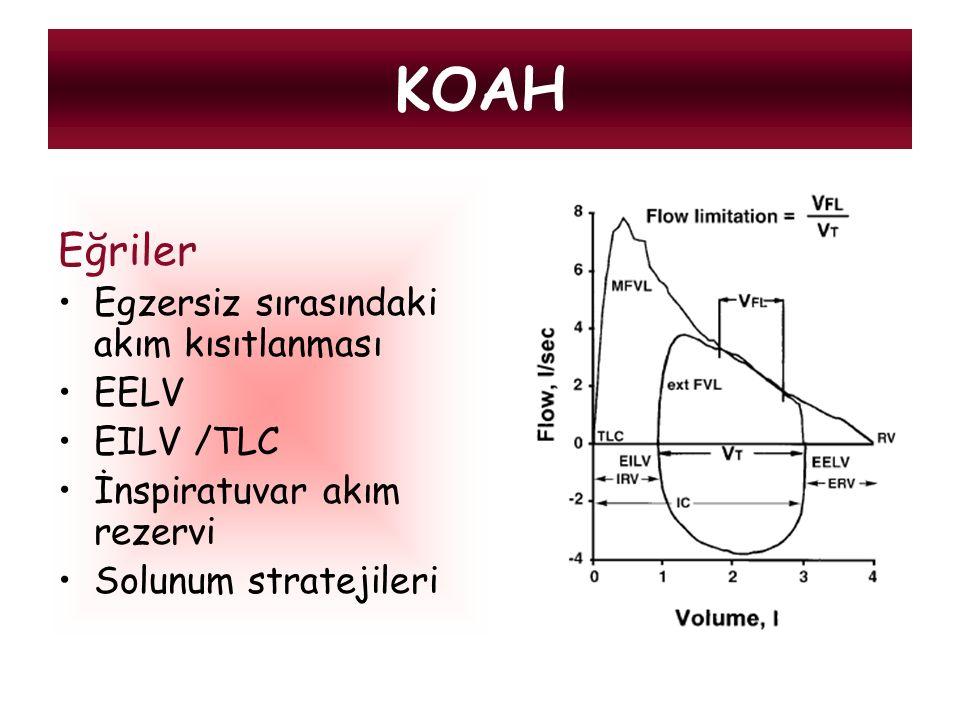 Eğriler Egzersiz sırasındaki akım kısıtlanması EELV EILV /TLC İnspiratuvar akım rezervi Solunum stratejileri KOAH