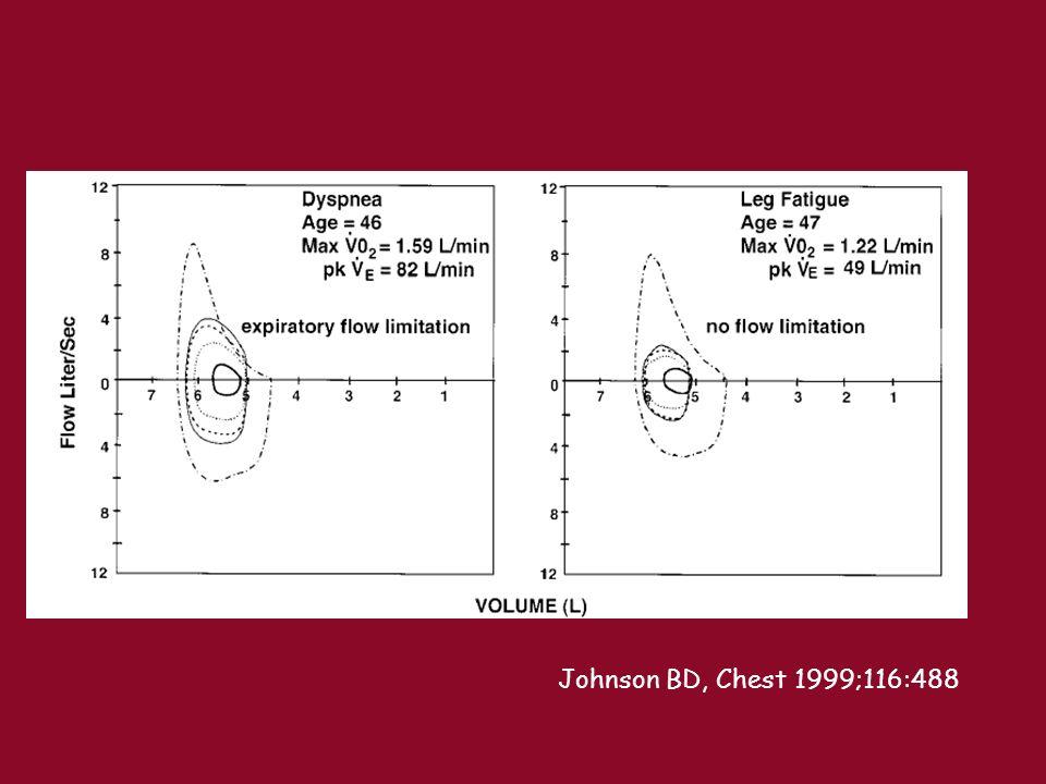 Johnson BD, Chest 1999;116:488