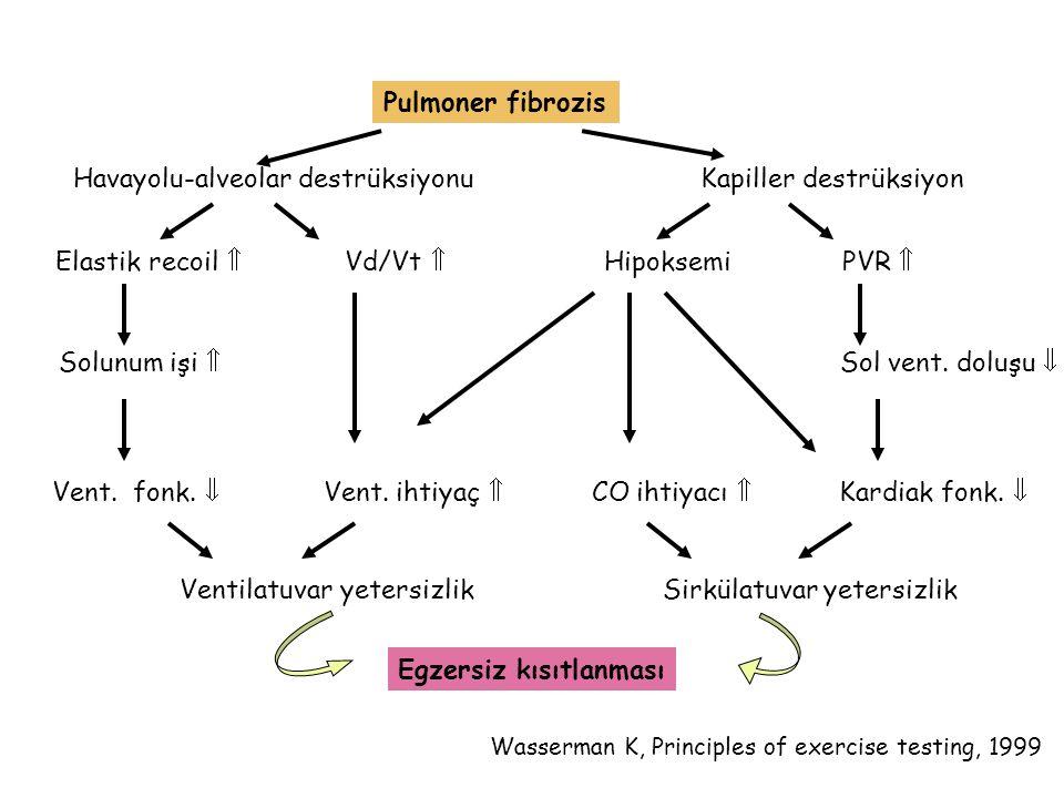 Pulmoner fibrozis Havayolu-alveolar destrüksiyonu Kapiller destrüksiyon Elastik recoil  Vd/Vt  Hipoksemi PVR  Solunum işi  Sol vent. doluşu  Vent