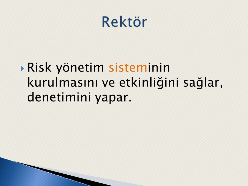  Risk yönetim sisteminin kurulmasını ve etkinliğini sağlar, denetimini yapar.