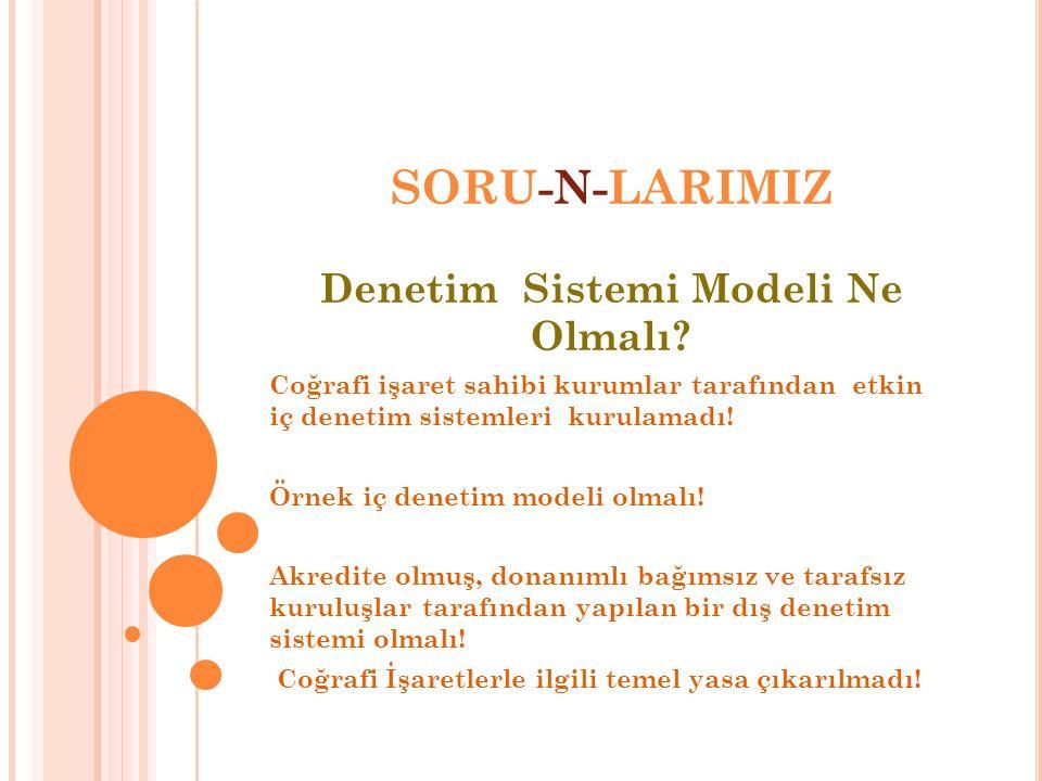 SORU-N-LARIMIZ Denetim Sistemi Modeli Ne Olmalı? Coğrafi işaret sahibi kurumlar tarafından etkin iç denetim sistemleri kurulamadı! Örnek iç denetim mo