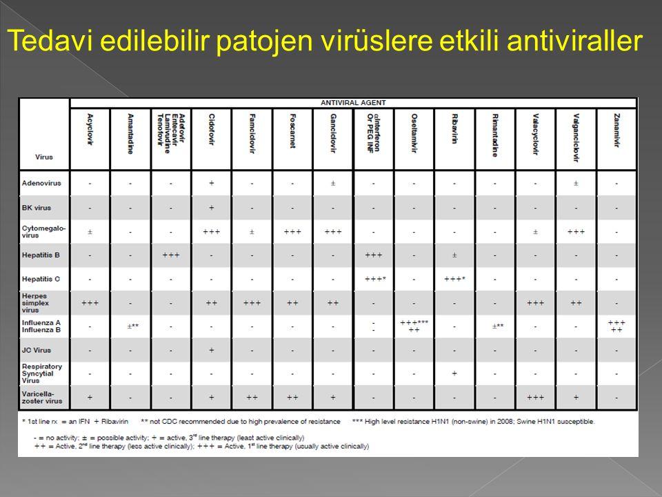 Tedavi edilebilir patojen virüslere etkili antiviraller