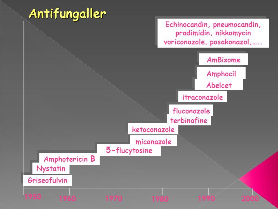 Griseofulvin Nystatin 5- flucytosine miconazole ketoconazole terbinafine fluconazole Amphotericin B itraconazole Abelcet Amphocil AmBisome Echinocandi