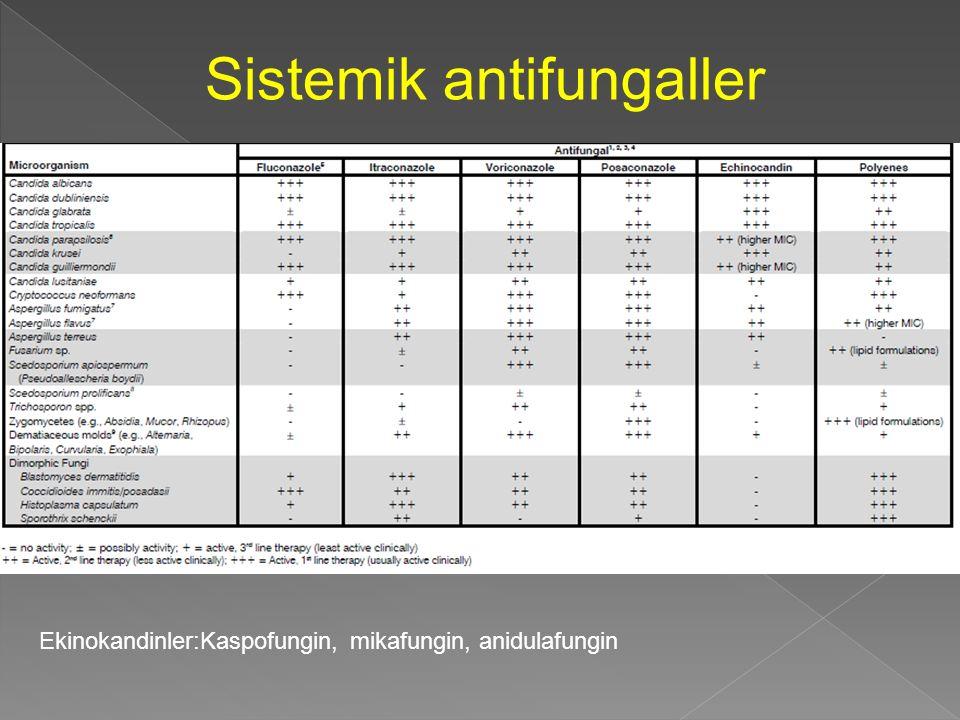 Sistemik antifungaller Ekinokandinler:Kaspofungin, mikafungin, anidulafungin