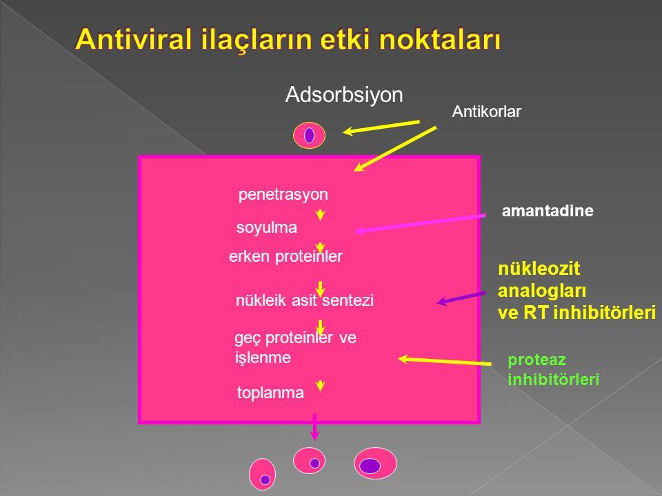 AntiviralEtki mekanizma sı Farmako- kinetik Yan etkilerKlinik kullanımEk bilgiler İnterferon alfa 2b; Pegile interferon RNA sentezini inhibe eden proteinlerin oluşumu; İV, İM, SC Grip benzeri tablo; Nötropeni, anemi, Trombostopeni, Nörotoksisk, konfüzyon, baş dönmesi Kronik HBV, HCV, HPV:kondiloma aküminatum Lamivudin, Adefovir, Entekavir, Tenofovir Hepatit B (HIV: Lv, Tf) RibavirinOral, İV Hepatit C (İFN ile birlikte); RSV.