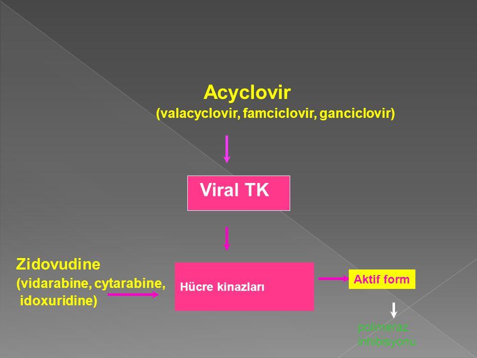 Acyclovir (valacyclovir, famciclovir, ganciclovir) Zidovudine (vidarabine, cytarabine, idoxuridine) Viral TK Hücre kinazları Aktif form polimeraz inhi