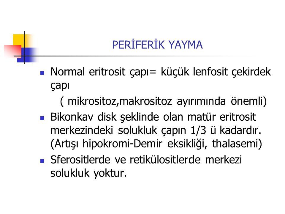 PERİFERİK YAYMA Normal eritrosit çapı= küçük lenfosit çekirdek çapı ( mikrositoz,makrositoz ayırımında önemli) Bikonkav disk şeklinde olan matür eritr