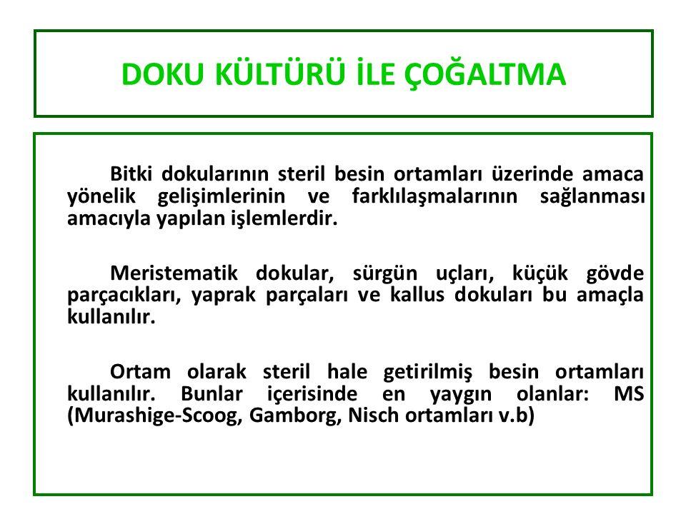 Meristem kültürü Sürgün ucu kültürü In vitro mikro aşılama Embriyo kültürü Anter kültürü Kallus kültürü Hücre kültürü Bitki doku kültürlerinde farklı kültür teknikleri kullanılmaktadır.