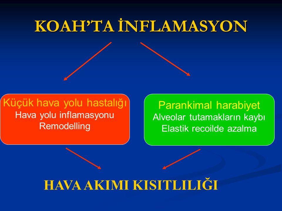 KOAH'TA İNFLAMASYON HAVA AKIMI KISITLILIĞI Küçük hava yolu hastalığı Hava yolu inflamasyonu Remodelling Parankimal harabiyet Alveolar tutamakların kaybı Elastik recoilde azalma