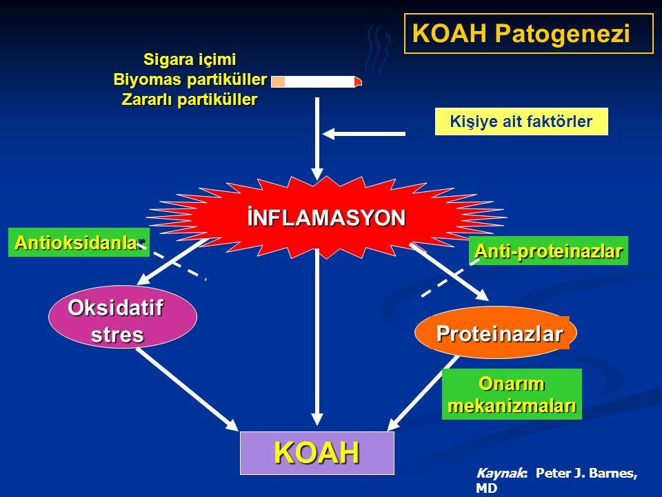 İNFLAMASYON KOAH Oksidatifstres Proteinazlar Onarımmekanizmaları Anti-proteinazlar Antioksidanlar Kişiye ait faktörler Sigara içimi Biyomas partiküller Zararlı partiküller Kaynak: Peter J.