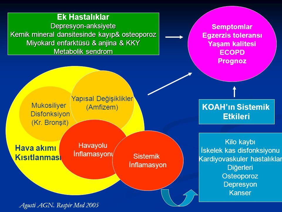 Hava akımı Kısıtlanması Mukosiliyer Disfonksiyon (Kr.