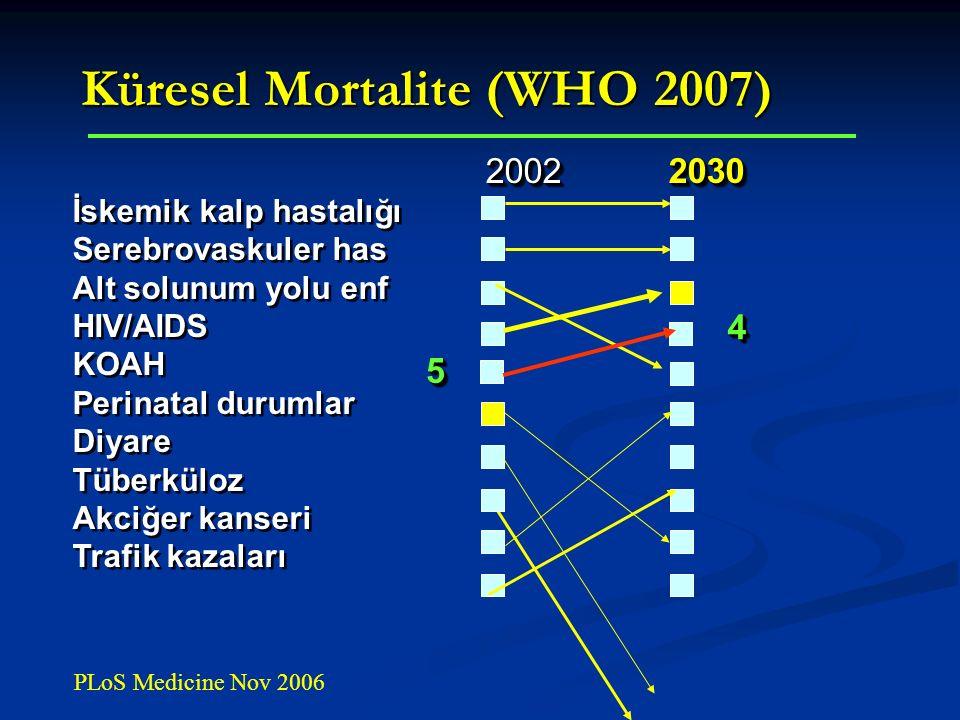 2002 2030 2002 2030 İskemik kalp hastalığı Serebrovaskuler has Alt solunum yolu enf HIV/AIDS KOAH Perinatal durumlar Diyare Tüberküloz Akciğer kanseri Trafik kazaları 2002 2030 2002 2030 İskemik kalp hastalığı Serebrovaskuler has Alt solunum yolu enf HIV/AIDS KOAH Perinatal durumlar Diyare Tüberküloz Akciğer kanseri Trafik kazaları 55 44 Küresel Mortalite (WHO 2007) PLoS Medicine Nov 2006