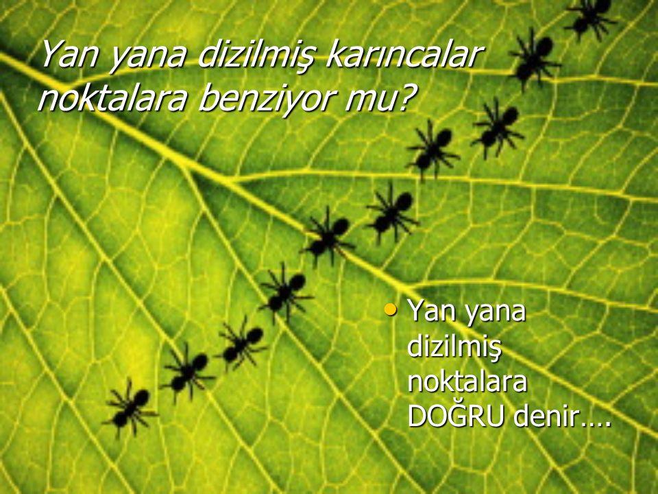 Yan yana dizilmiş karıncalar noktalara benziyor mu? Yan yana dizilmiş noktalara DOĞRU denir…. Yan yana dizilmiş noktalara DOĞRU denir….
