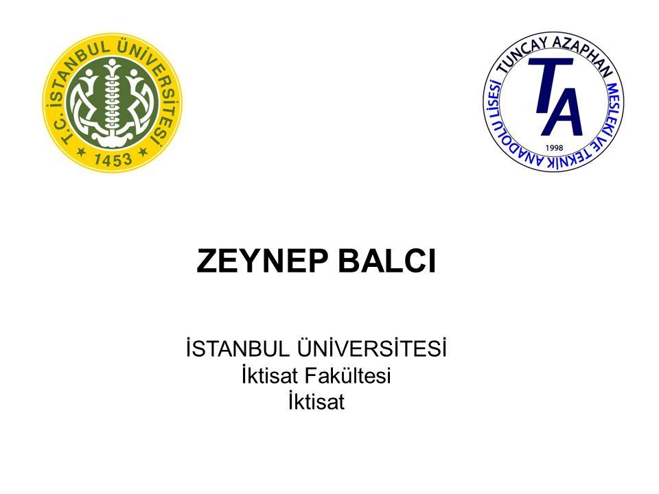 İREM CAN KARAMAN MARMARA ÜNİVERSİTESİ (İSTANBUL) Siyasal Bilgiler Fakültesi Yerel Yönetimler
