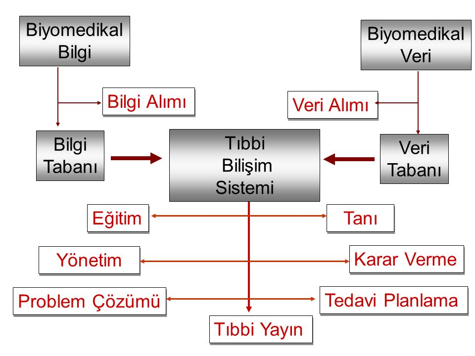 Prof.Dr. Bekir Karlık8 Tıp Bilişimi Bir Bilim midir.