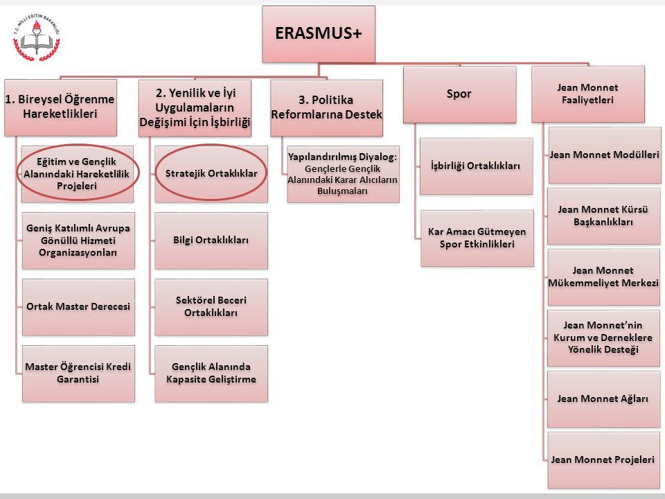 ERASMUS+ 1. Bireysel Öğrenme Hareketlikleri Eğitim ve Gençlik Alanındaki Hareketlilik Projeleri Geniş Katılımlı Avrupa Gönüllü Hizmeti Organizasyonlar