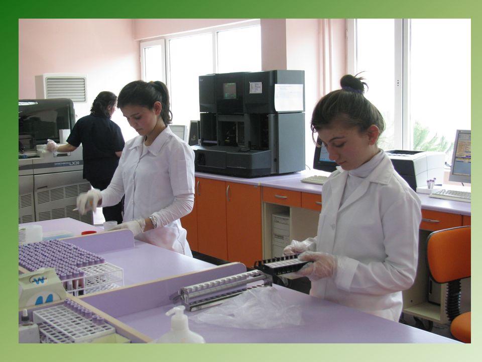 Tıp ve sağlık teknolojisinin çeşitli dallarında yapılan bilimsel araştırmalarda elde edilen bulguların derlenmesi, düzene konması ve araştırıcıların hizmetine sunulması konularında çalışan kişidir.