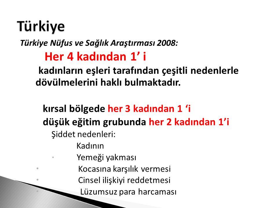 Türkiye Nüfus ve Sağlık Araştırması 2008: Her 4 kadından 1' i kadınların eşleri tarafından çeşitli nedenlerle dövülmelerini haklı bulmaktadır. kırsal